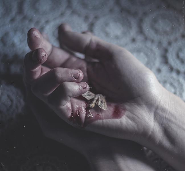 maria-petrova-fragile_life_by_mariapetrova-d9wvs3k
