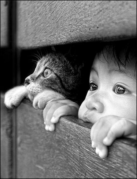 child-and-cat